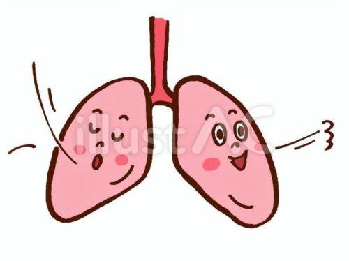 食養生 空気 肺
